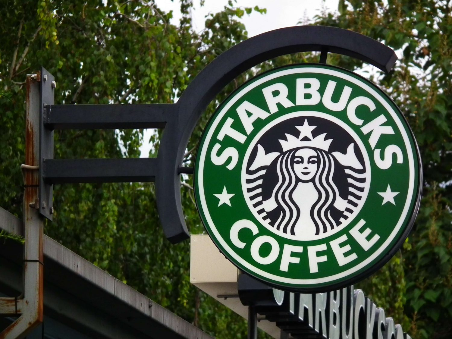 Starbucks Confirms More Vegan Food Options Are Coming Due to High Demand