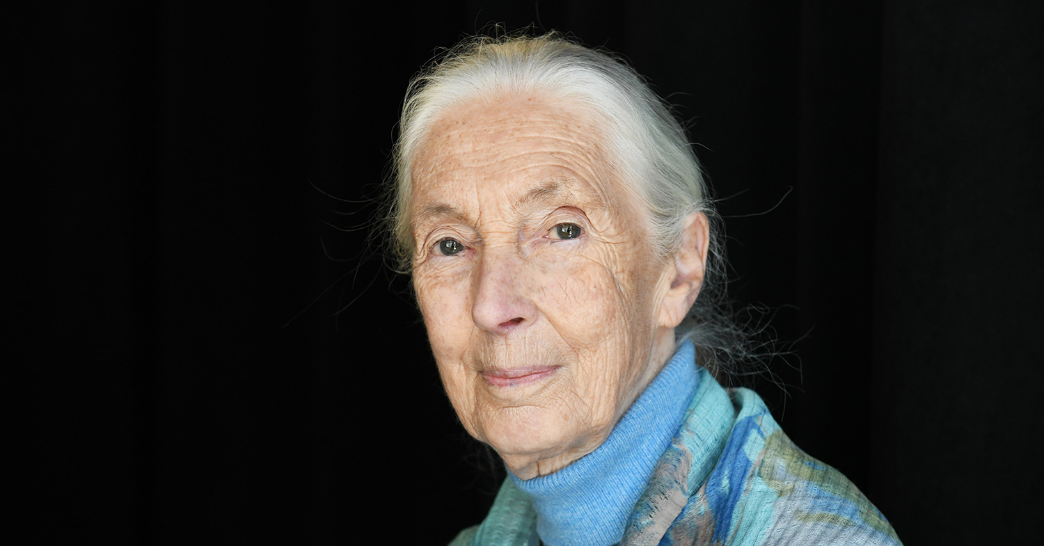 Jane Goodall 'Still Has Faith' That We Can Save the Planet