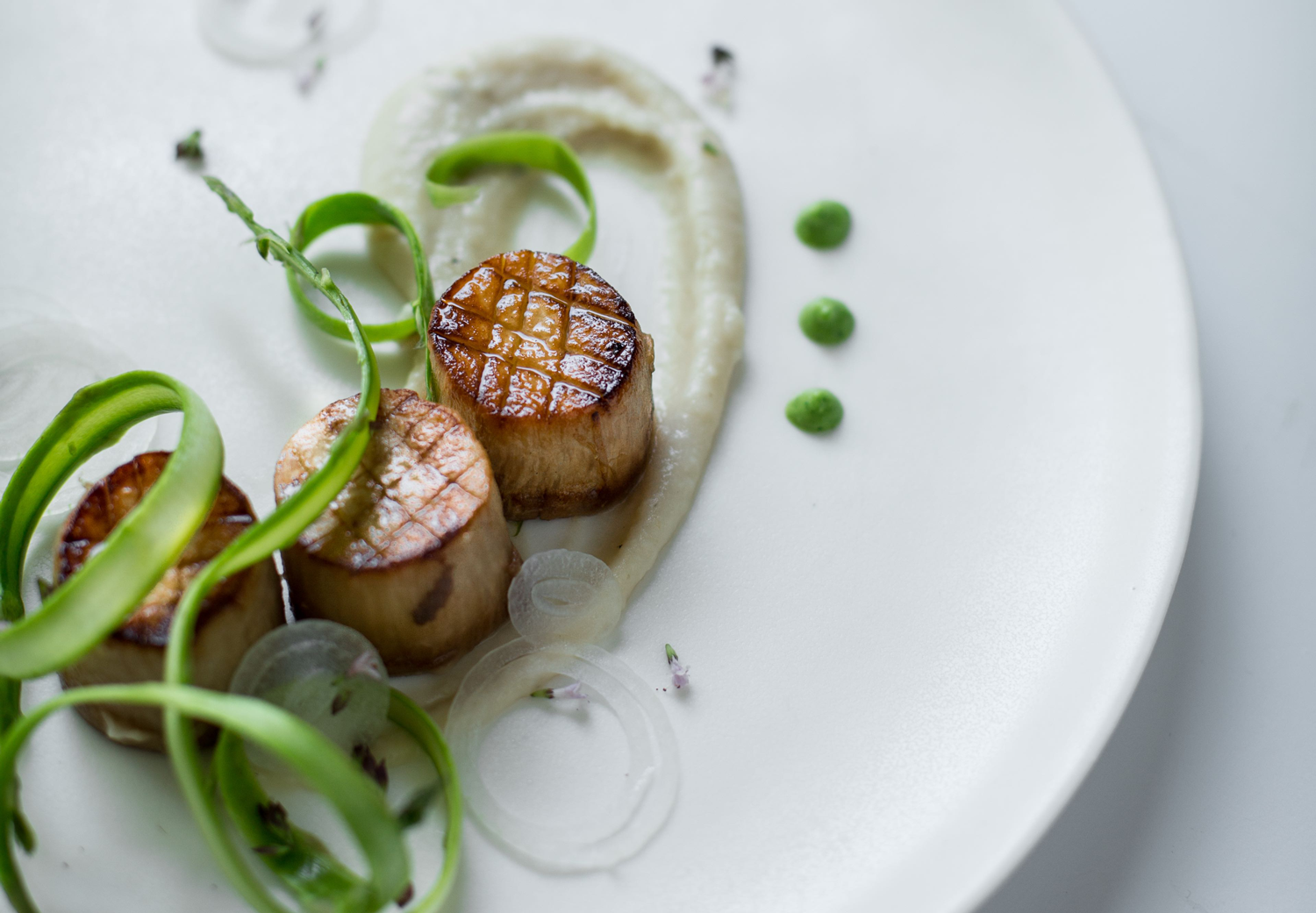 wicked healthy scallops feature