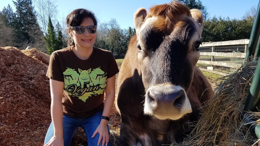 Alison Cole Cow Cropped