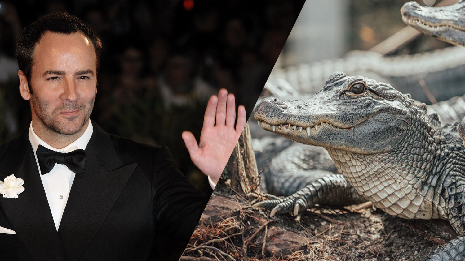 Vegan Designer Tom Ford Launches Cruelty-Free Crocodile Leather at New York Fashion Week