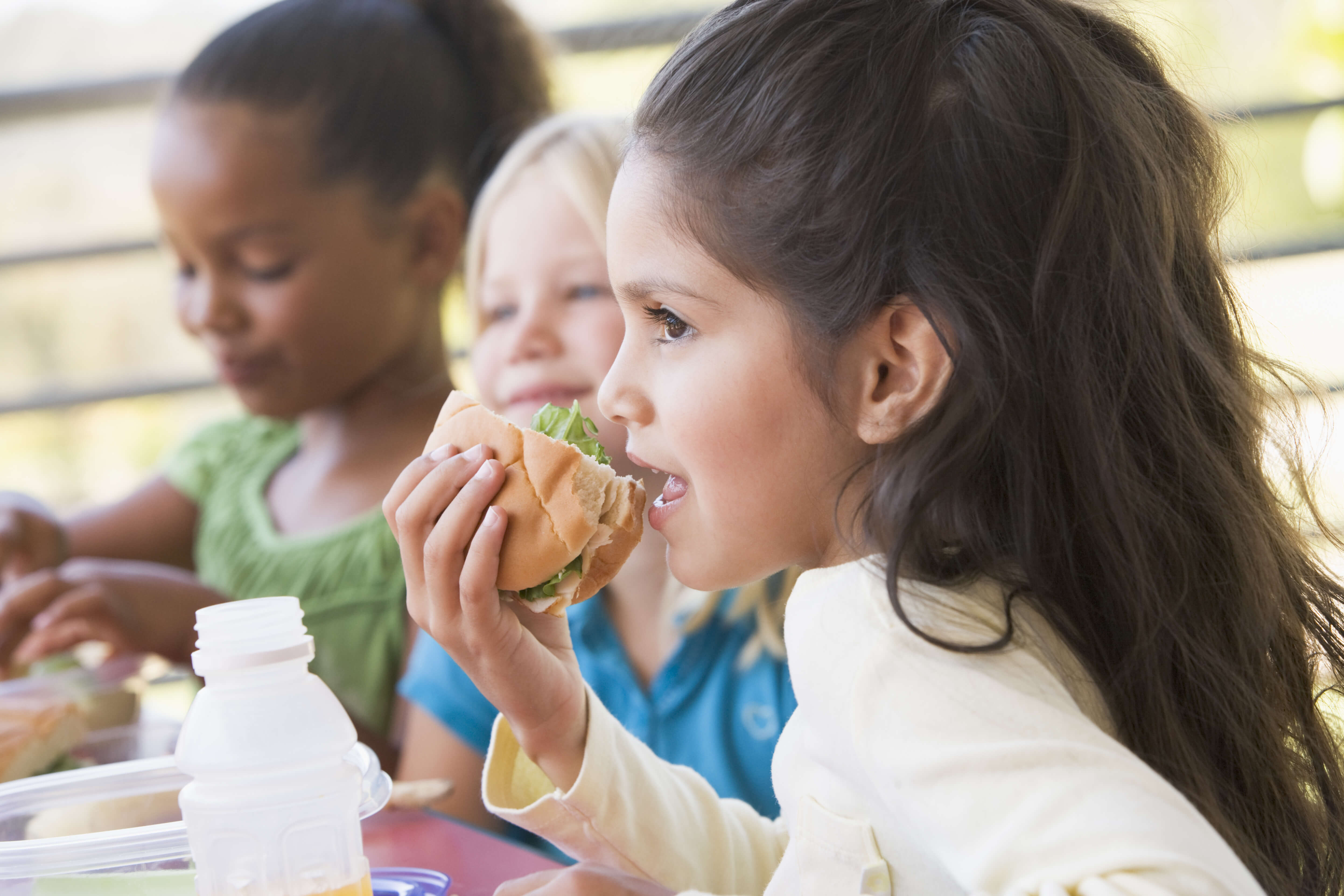 99% of UK School Lunch Programs Could 'Save Lives' By Removing Process Meat