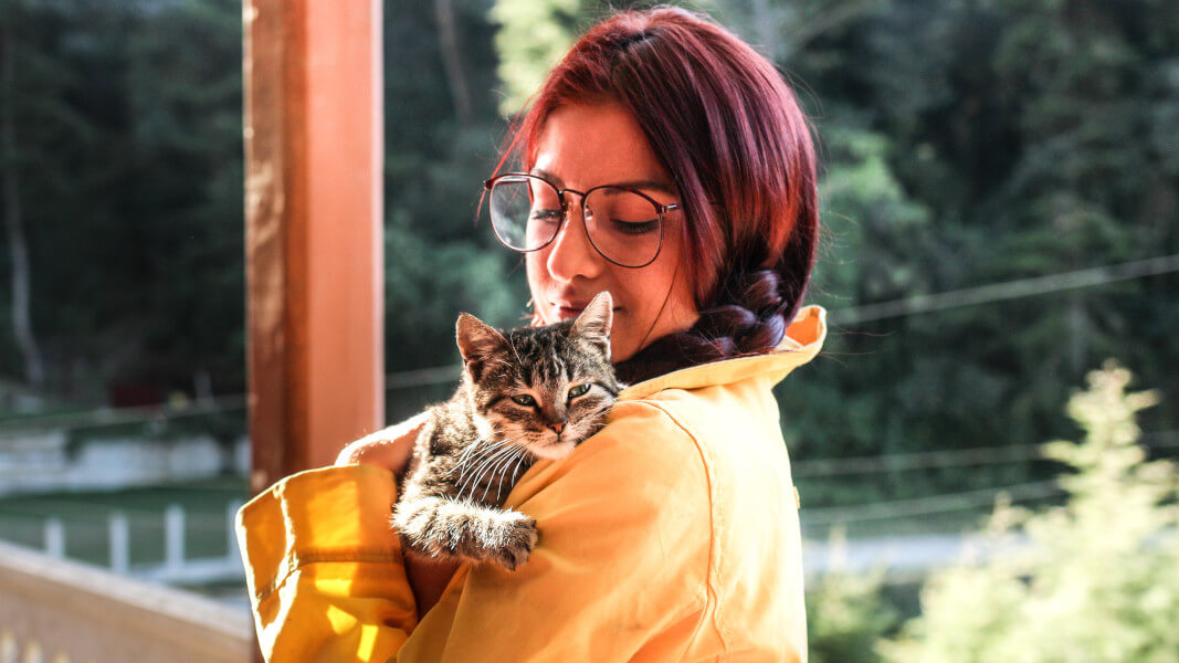 New Legislation Protects Domestic Violence Survivors and Their Pets