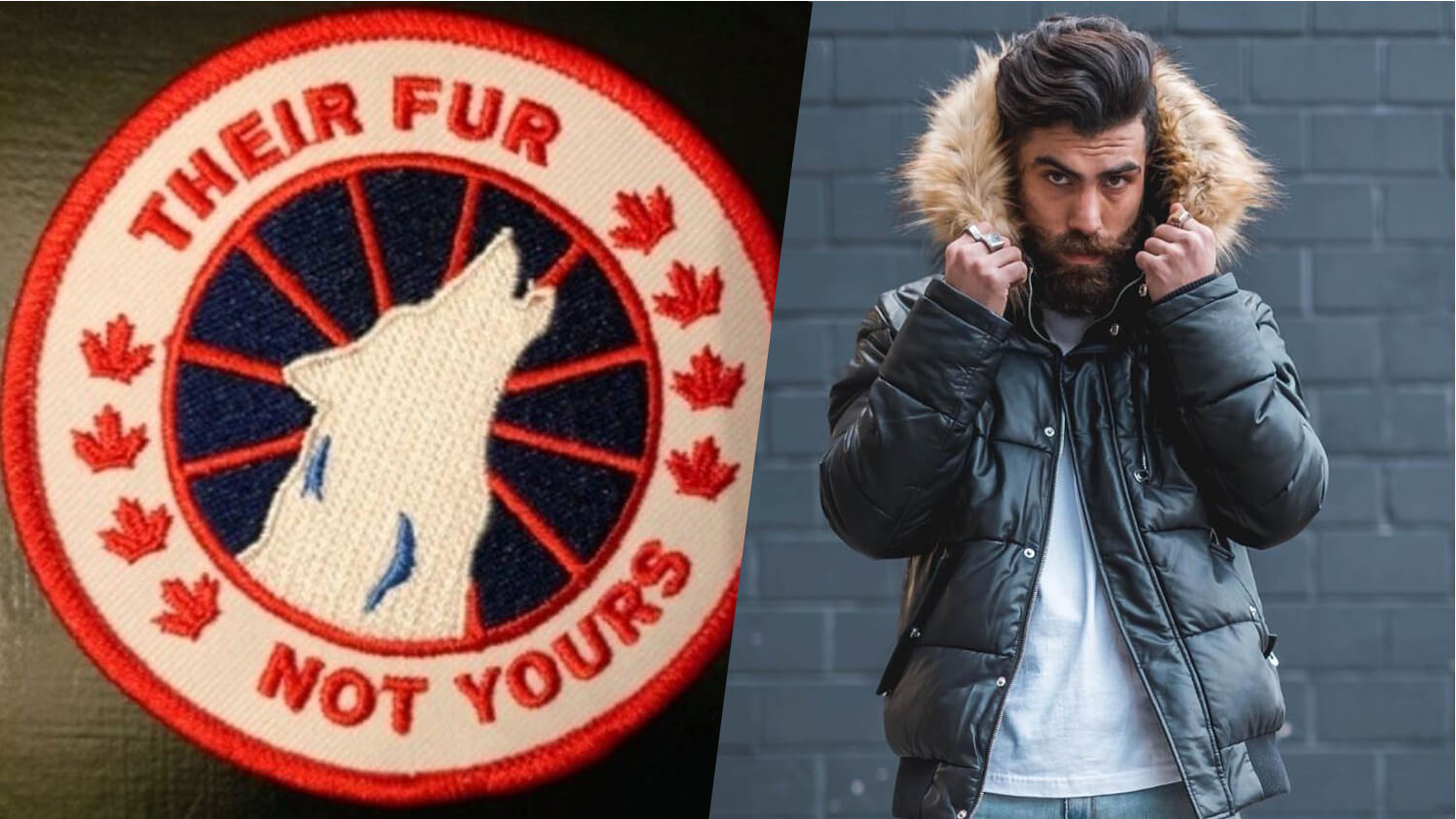 9 Vegan Canada Goose Coat Alternatives to Keep You Warm, Cozy, and Stylish This Winter