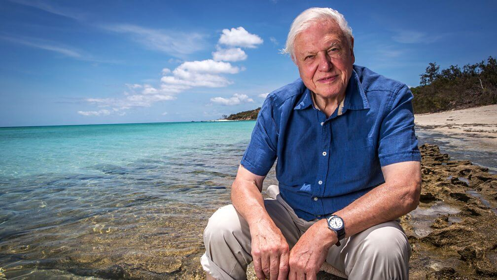 David Attenborough Lost His Appetite for Meat Due to 'the State of the Planet'