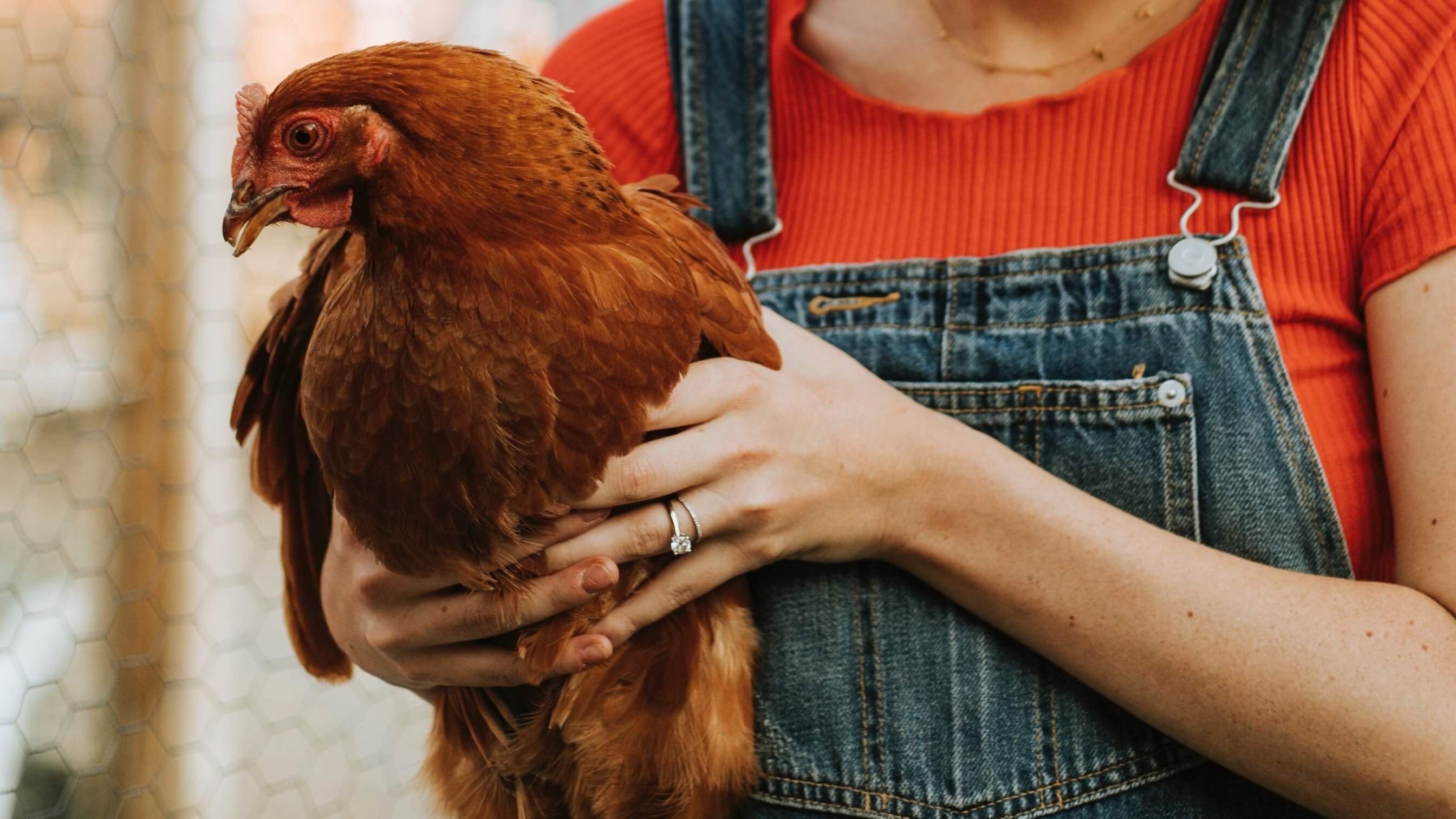 Former Slaughterhouse Worker Now Saves Millions of Animals