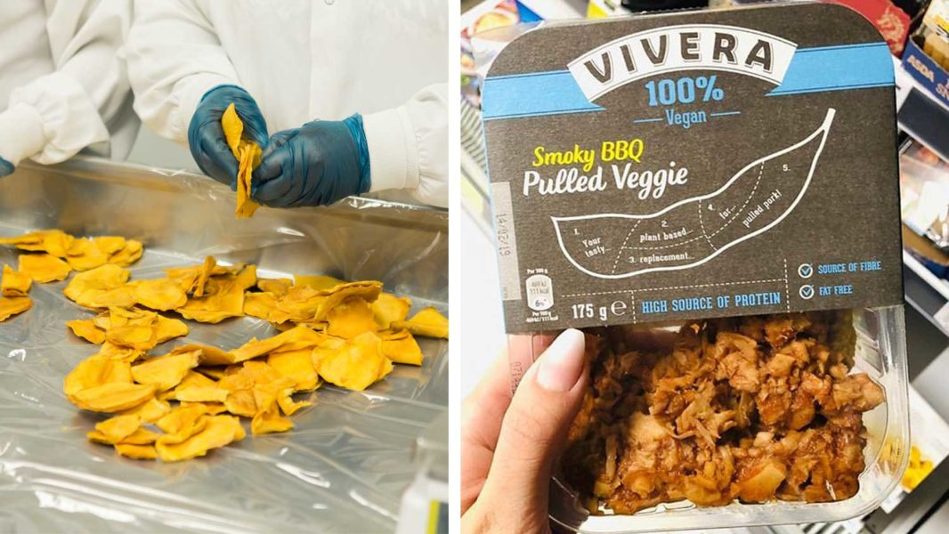 Giant European Protein Factory Opening to Make Vegan Meat More Affordable