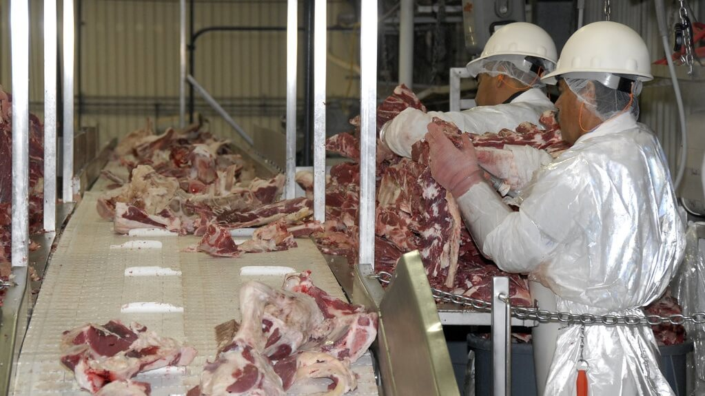 New USDA Rules Allow Slaughterhouses to 'Self Police'