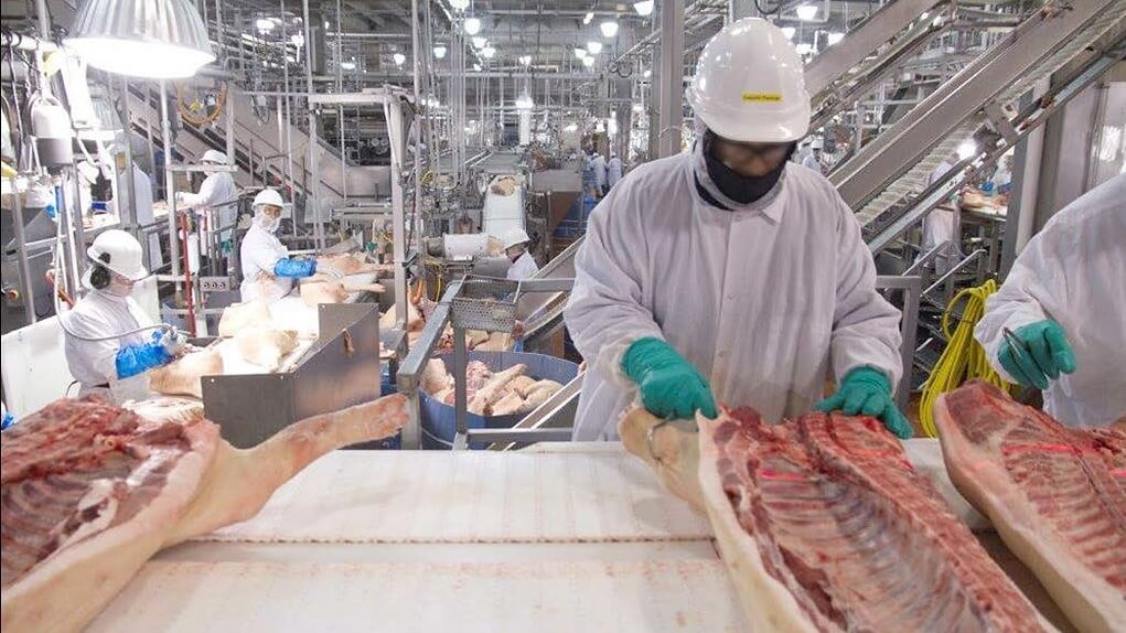 900 Workers at a Tyson Factory Test Positive for COVID-19