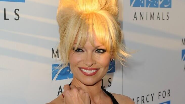 Pamela Anderson is Adopting All of the Dogs From Texas A&M Lab