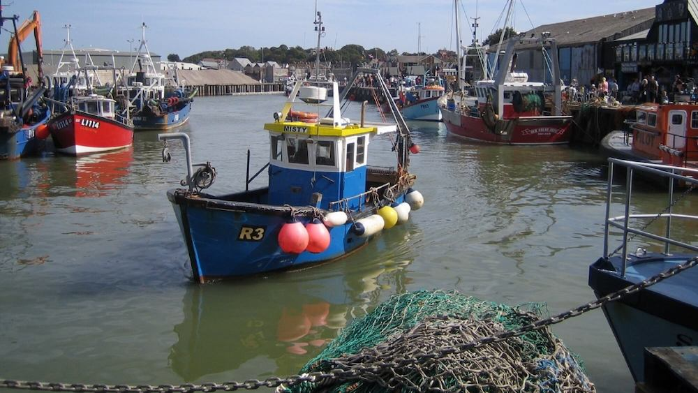 Sussex Makes History With First Fishing Ban for the Climate