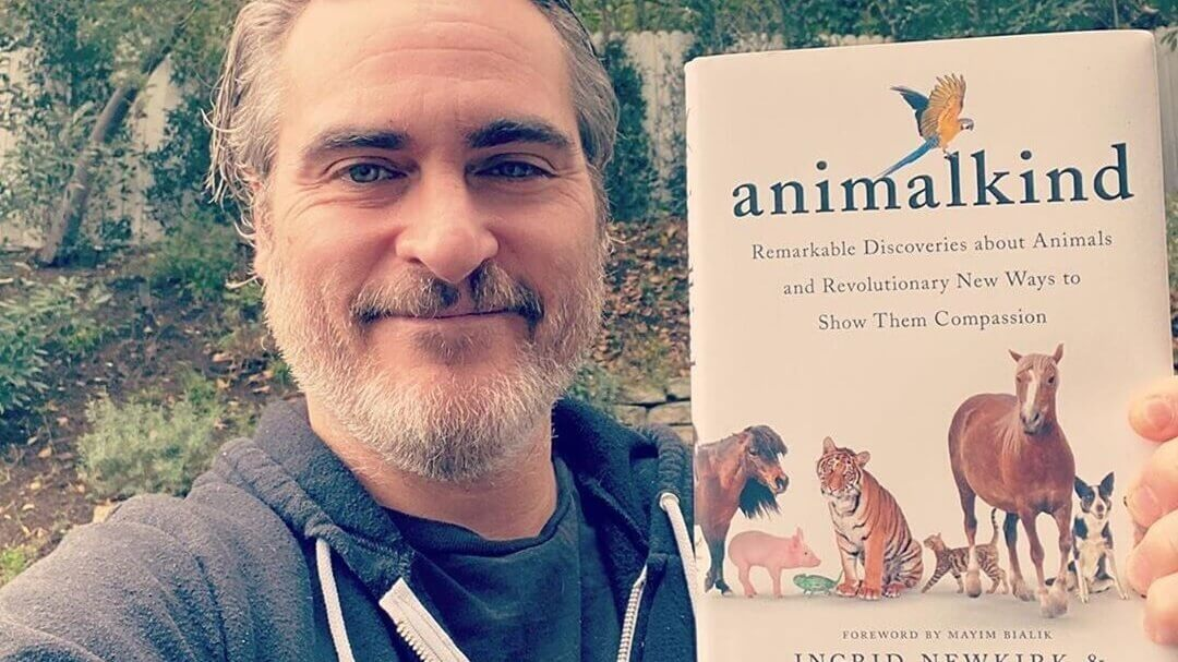 Joaquin Phoenix Is Producing a New Documentary About Pig Sentience