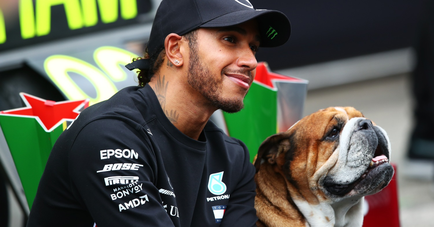 Lewis Hamilton Says His Dog Is Now a 'Super Happy' and Healthy Vegan