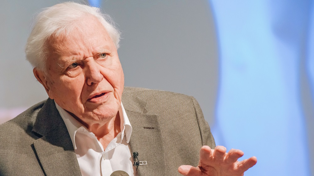 David Attenborough Joined Instagram Just to Talk About Climate Change