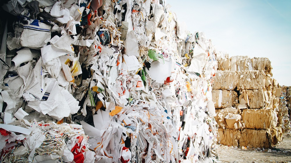 What Is Biodegradable Fashion?