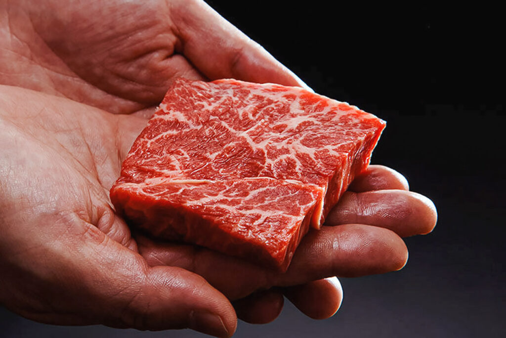 Photo features Eat Just's cell-based meat. In Japan, scientists just 3D printed wagyu beef for the first time ever.
