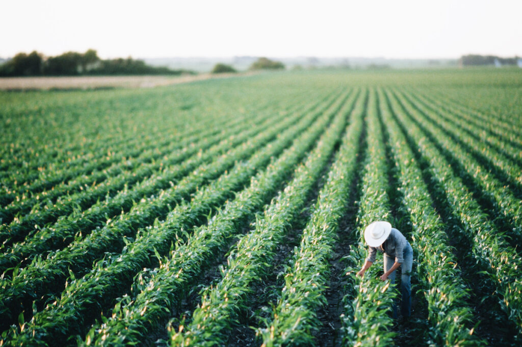 Photo of a woman working in the fields.